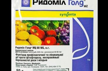 Агроном: Характеристики томата Джина и особенности сорта в 2019 году